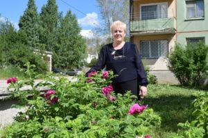 Всё для покупателя. Даже розы, которые посадила С.Фадеева.