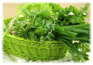 polza-zeleni