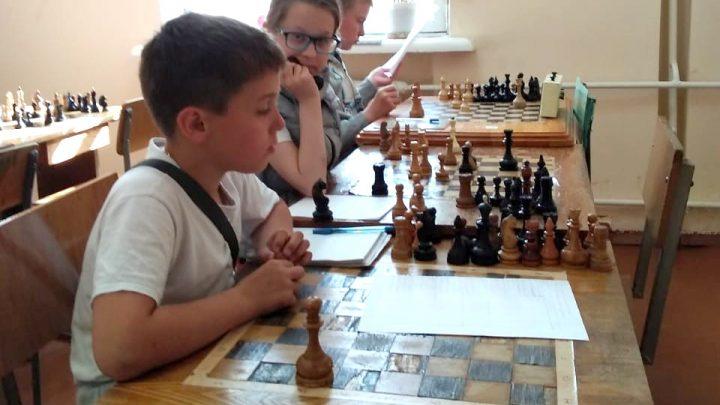 Шахматы любят все