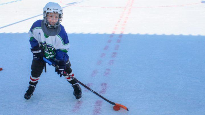 Мы за спортивный лёд!