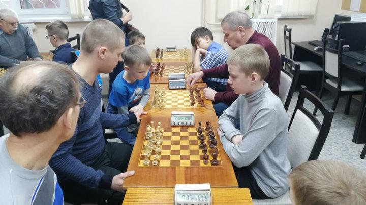 Успех взрослых шахматистов