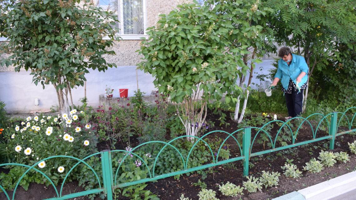 Настоящий цветочный рай в городских дворах