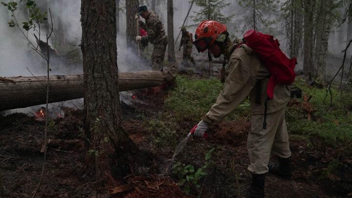 Лесной пожар – беда общая