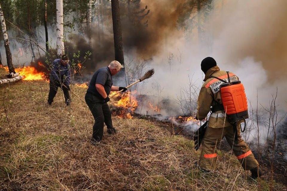 Что помогло в борьбе с огнём?