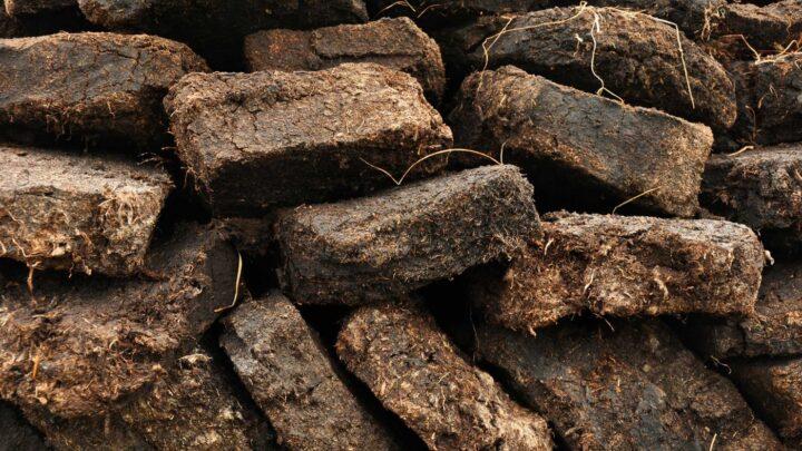 В Свердловской области успешно завершился эксперимент по переводу котельных с нефти, угля и газа на торф, дрова и биогаз