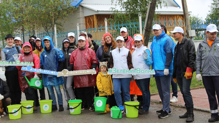 Конец мая выдался дождливым, но погода не стала помехой для акции РУСАЛа «Зелёная волна», в ходе которой волонтёры высадили около сотни рябинок
