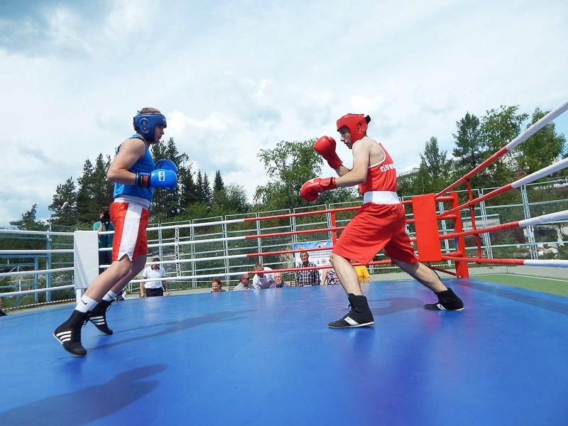 В Североуральске прошло XV Открытое первенство городского округа по боксу памяти Владимира Барыкина