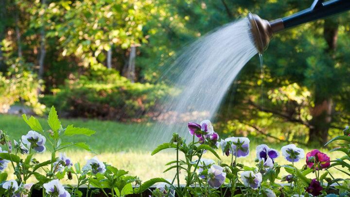 О водоснабжении нужно побеспокоиться