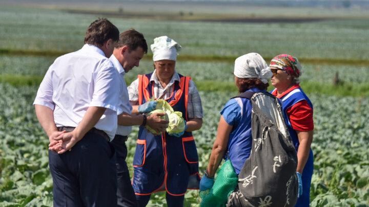 Сумма ущерба сельхозпредприятий оценивается в 4,7 миллиарда рублей