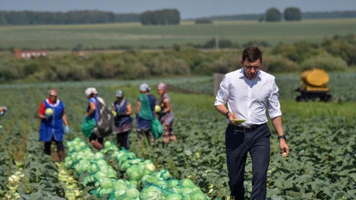 Евгений Куйвашев ввёл режим ЧС в 39 муниципалитетах