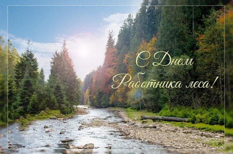 Уважаемые работники и ветераны лесного хозяйства Североуральского городского округа!